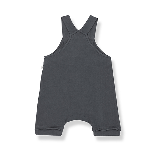 one-more-in-the-family-ilai-overall-anthracite-back