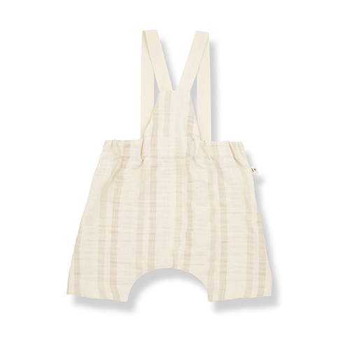 1-in-the-family-max-overall-back