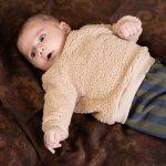 house-of-jamie-teddy-crewneckweater
