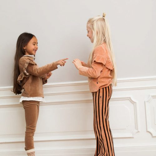 house-of-jamie-flared-pants-blush-&-choco-stripes-velvet